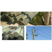 Опоры ЛЭП деревянные 8 м (пропитка-Элемсепт)
