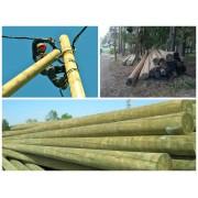 Опоры ЛЭП деревянные 9 м (пропитка-Элемсепт)